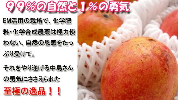 mango-setumei3.jpg
